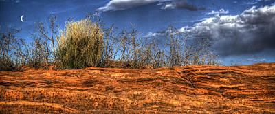 Desert Photograph - Navaho Sandstone At Horseshoe Bend by Roger Passman