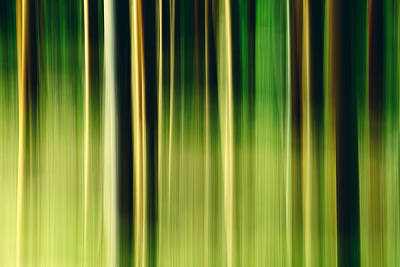 Abstract Movement Photograph - Nemisis by Todd Klassy