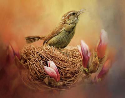 Carolina Wren Digital Art - Nesting Wren by TnBackroadsPhotos