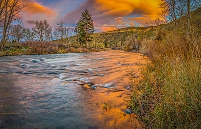 Photograph - Nevada Gold  by Scott McGuire