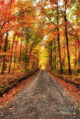 Never Ending Autumn Print by Dan Carmichael