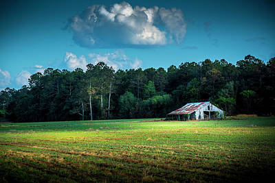 New Crops Print by Marvin Spates