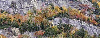 Ledge Photograph - New England Foliage Burst by Thomas Schoeller