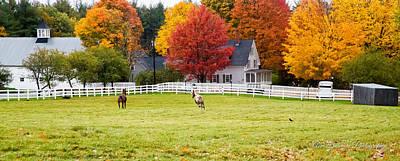 Helen Paul Photograph - New England Horse Farm by Ann Dinsmore