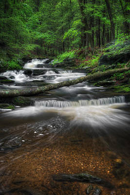 New England Mountain Stream Portrait Print by Bill Wakeley