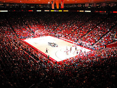 Replay Photograph - New Mexico Lobos University Arena by Replay Photos