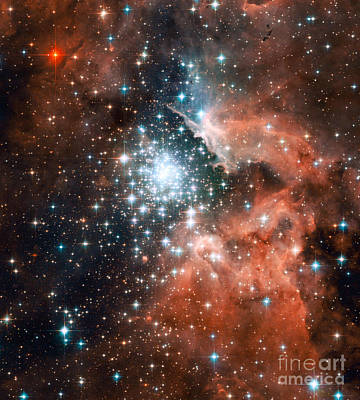 Space Exploration Photograph - Ngc 3603, Giant Nebula by Nasa