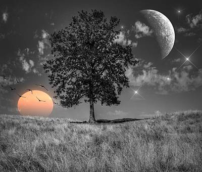Moon Digital Art - Night And Day by Marianna Mills