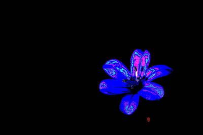 Manipulation Photograph - Night Blue by Richard Patmore
