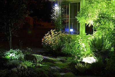Rocks Painting - Night Light Garden  by Michael Mrozik