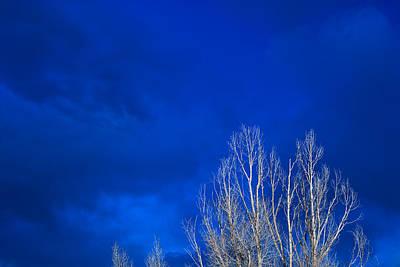 Night Sky Print by Steve Gadomski