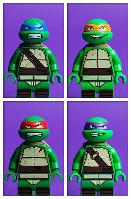 Small Turtle Photograph - Ninja Turtles by Samuel Whitton