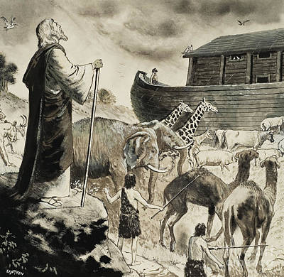 Noahs Painting - Noah's Ark by Clive Uptton