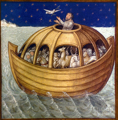 Noahs Ark Print by Granger