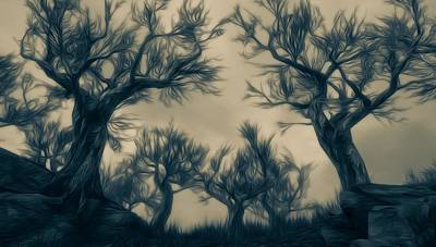 Landscape Digital Art - Nocturnal Forest by Andrea Mazzocchetti