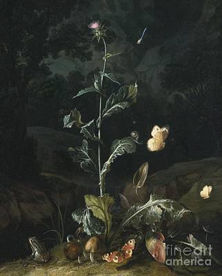 Forest Floor Painting - Nocturnal Forest Floor Still Life With A Thistle by van Schriek