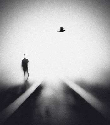 Train Photograph - Nocturne by Hengki Lee
