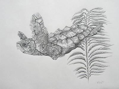 Orca Drawing - Norman by Mayhem Mediums
