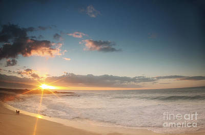 Hawaii Dog Photograph - North Shore Oahu Sunset by Vince Cavataio - Printscapes