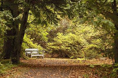 Northumberland, England Park Bench Print by John Short