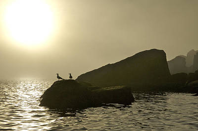 Sunset In Norway Photograph - Norway, Tromso, Silhouette Of Pair by Keenpress