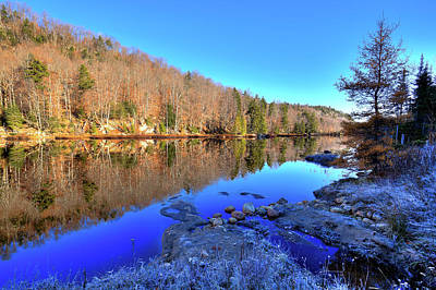 Evergreen Photograph - November Reflections by David Patterson