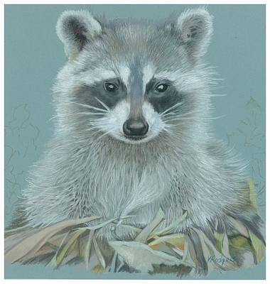 Raccoon Drawing - Now I Lay Me Down To Sleep by Vera Rodgers