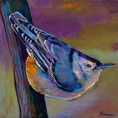 Wildlife Landscape Painting - Nuthatch by Johnathan Harris