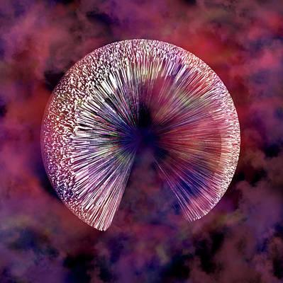 Physics Digital Art - Nyc Iris  by Betsy Knapp