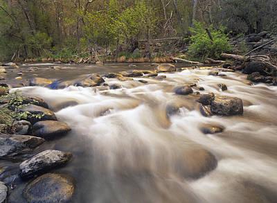 Oak Creek At Grasshopper Point Sedona Print by Tim Fitzharris