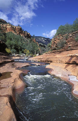 Oak Creek Flowing Through The Red Rocks Print by Rich Reid