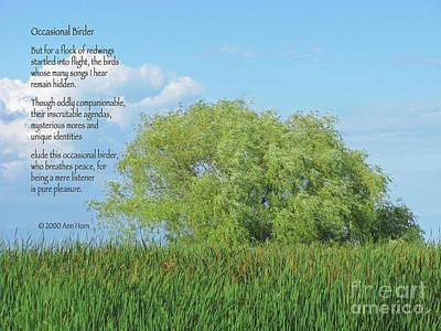 Occasional Birder Print by Ann Horn