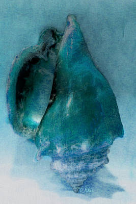 Shell Pastel Painting - Ocean Colors Whelk Shell Art by Barbara Chichester