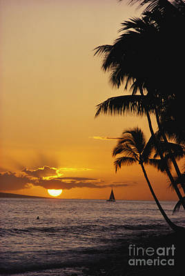Ocean Sunset Print by Erik Aeder - Printscapes