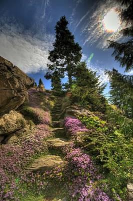 Granger Photograph - Ohme Gardens by Brad Granger