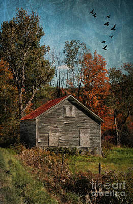 Old And Abandoned In Vermont Print by Deborah Benoit