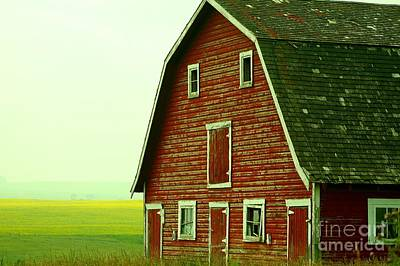 Old Barn Print by Mario Brenes Simon