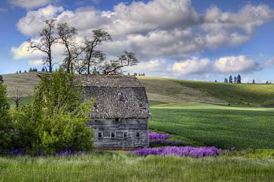 Old Barn - Palouse - Washington Print by Nikolyn McDonald
