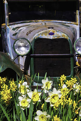 Old Car And Daffodils Print by Garry Gay