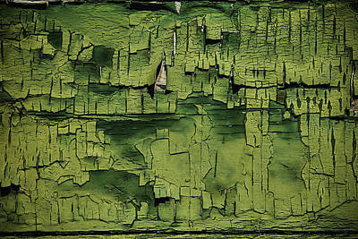 Weatherworn Photograph - Old Cracked Green Paint by Garry Gay