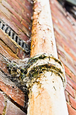Drain Photograph - Old Drain Pipe by Tom Gowanlock