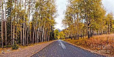 Old Fall River Road With Changing Aspens - Rocky Mountain National Park - Estes Park Colorado Print by Silvio Ligutti