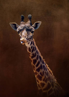 Old Funny Face Giraffe Print by Carla Parris