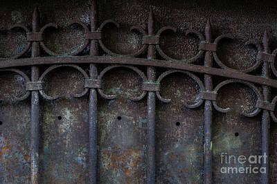 Old Metal Gate Print by Elena Elisseeva