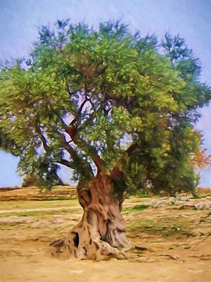 Old Olive Tree Print by Impressionist Art