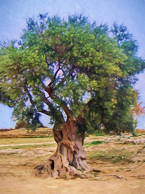 Sicily Painting - Old Olivetree by Lutz Baar