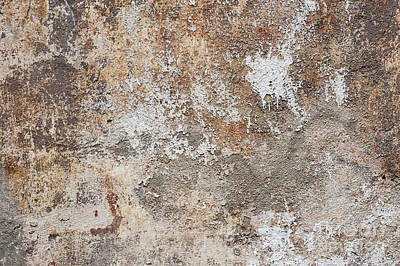 Old Painted Wall Print by Elena Elisseeva
