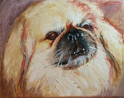 Tibetan Spaniel Painting - Old Pup by Cathleen Larson