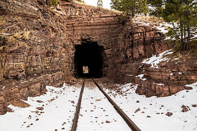 Old Railroad Tunnel Print by Sue Smith