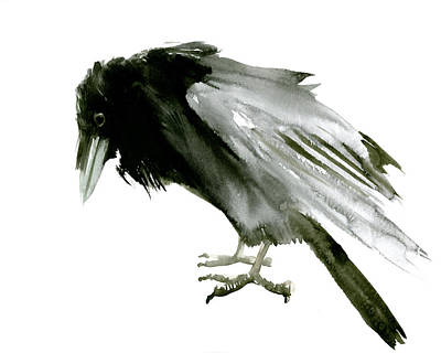 Crow Drawing - Old Raven by Suren Nersisyan